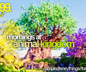 disney, morning, and text image