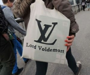 bag, lord voldemort, and harry potter image