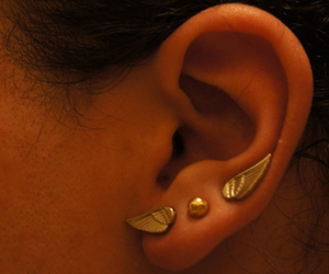ear and gold image