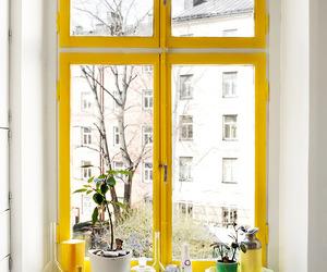 yellow, window, and design image