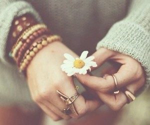 bracelets, flower, and grey image