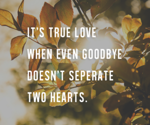 quote, goodbye, and hearts image