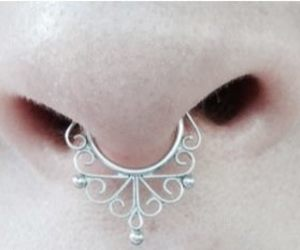 jewellery, nose, and pale image
