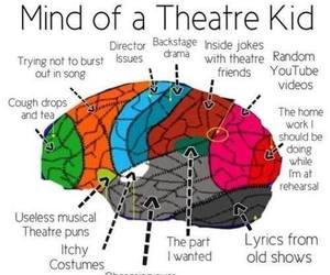brain and mind image
