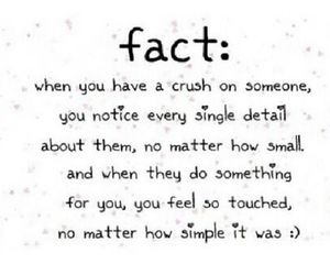 love, crush, and quote image