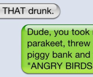 angry birds, drunk, and funny image