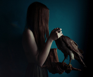 falcon and girl with falcon image