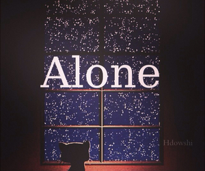 alone, cat, and star image