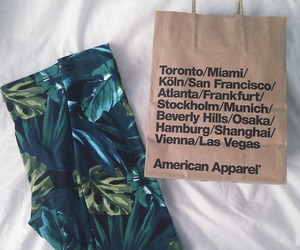 fashion, american apparel, and clothes image