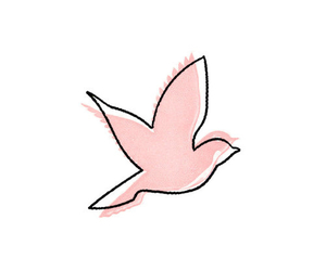 bird, drawing, and pink image