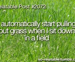 grass, quote, and true image