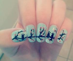 nails, bird, and blue image