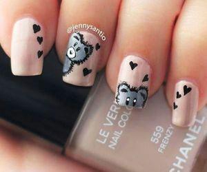nails, cute, and bear image