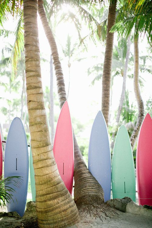 Surf Boards Shared By Cat On We Heart It