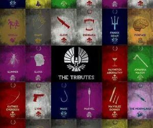 tribute, capitol, and katniss everdeen image