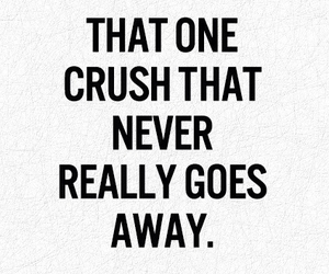 crush, love, and quote image