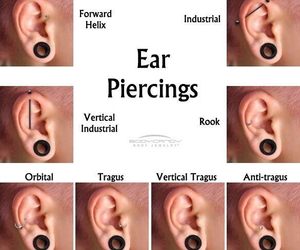 ear, more, and Piercings image