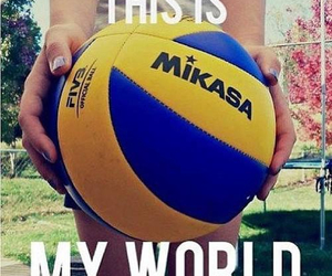 volleyball and world image