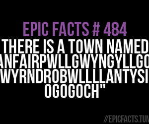 fact, funny, and wales image