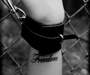 bdsm and freedom image