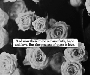 bible, black and white, and couples image