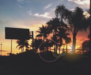 Aloha, beach, and sea image