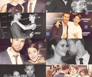 divergent, Shailene Woodley, and sheo image