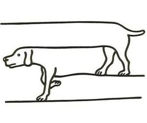 dog, black and white, and drawing image