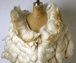 feather, fashion, and coat image