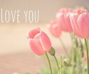 flowers, inspirational, and pink image