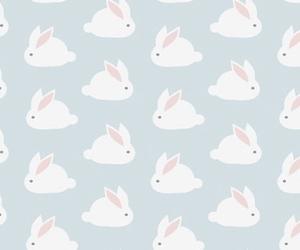 wallpaper, rabbit, and bunny image