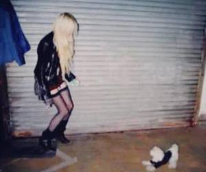 dog, Taylor Momsen, and the pretty reckless image