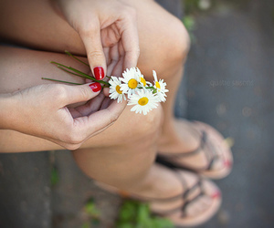 flowers, beautiful, and nails image