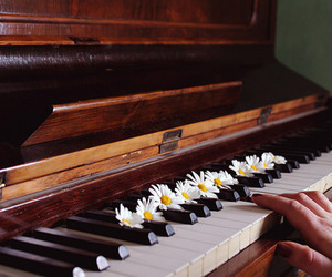 piano, flowers, and music image