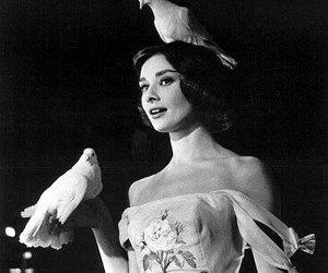 audrey hepburn, beautiful, and birds image