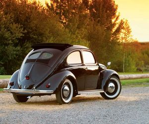 beetle, car, and photography image