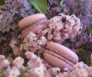 flowers, macaroons, and dessert image