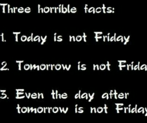fact and friday image