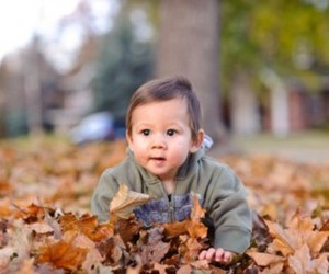 adorable, autumn, and baby image
