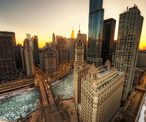 chicago, buildings, and city image