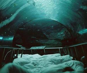 bed, water, and ocean image