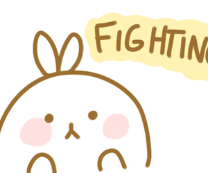 bunny, cutie, and fighting image
