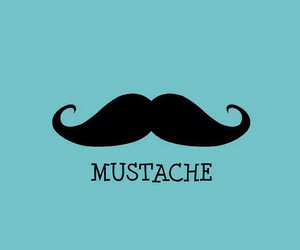 mr, mustache, and mr mustache image