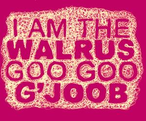 Lyrics, the beatles, and i am the walrus image