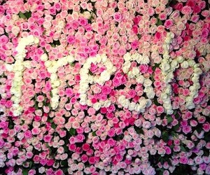 flowers and fresh image