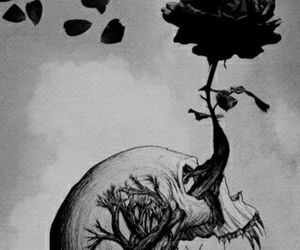 skull, rose, and tree image