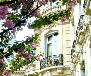 flowers, paris, and balcony image