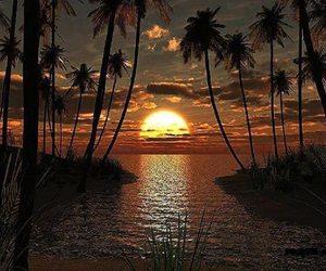 beautiful, sea, and sunset image