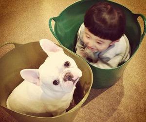 dog, boy, and kid image