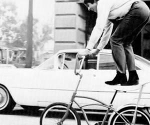beatle, bicycle, and bike image